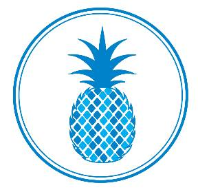Pineapple Property Group